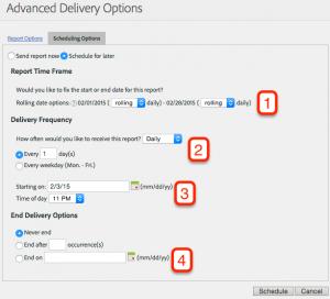 Preparando el exámen de Adobe Site Catalyst: Distribución de informes 12