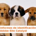 Informes de identificación de usuarios omniture