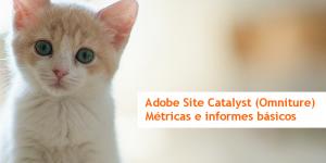 Site catalyst métricas e informes básicos de Omniture