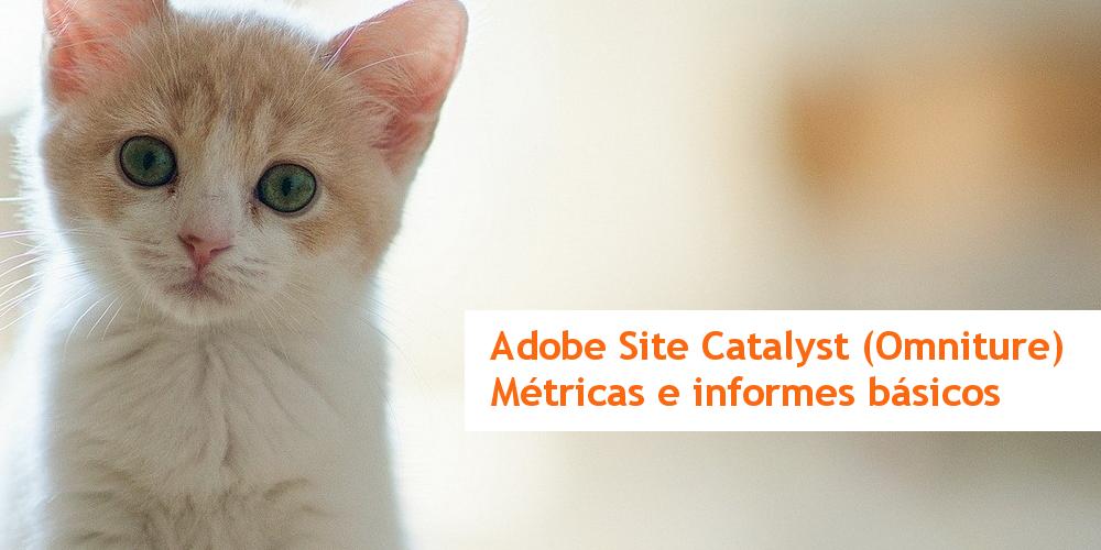 Preparando el Exámen de Adobe SiteCatalyst: las métricas básicas en los informes