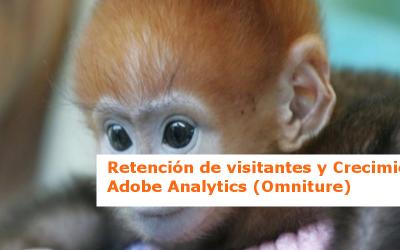 Retención de visitantes y crecimiento – los informes de Adobe SiteCatalyst (Omniture)