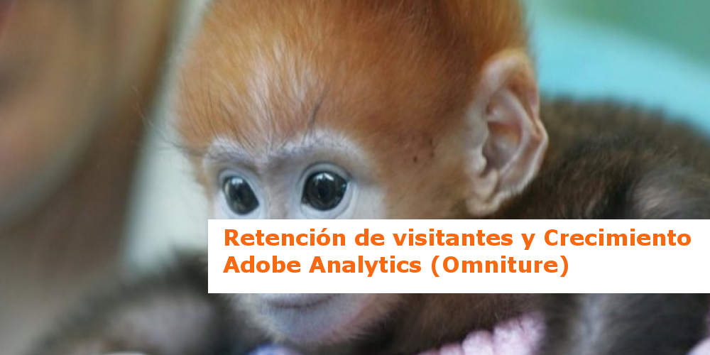 Retención de visitantes y crecimiento – los informes de Adobe SiteCatalyst