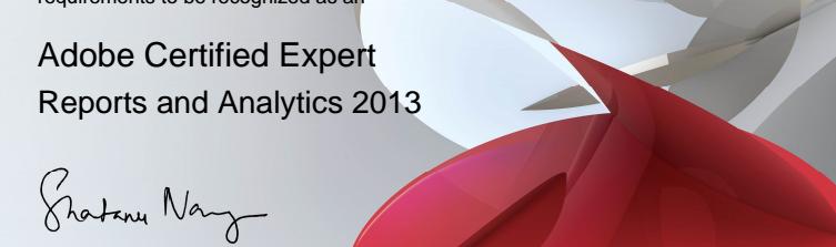 Curso: cómo Aprobar la certificación de Adobe (Omniture)