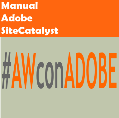 Manual Adobe SiteCatalyst (Omniture) 1