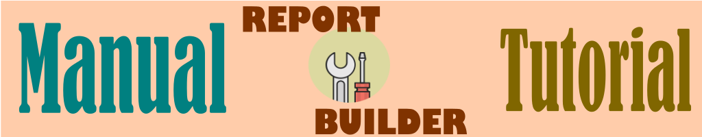 Manual de Report Builder: primeros pasos