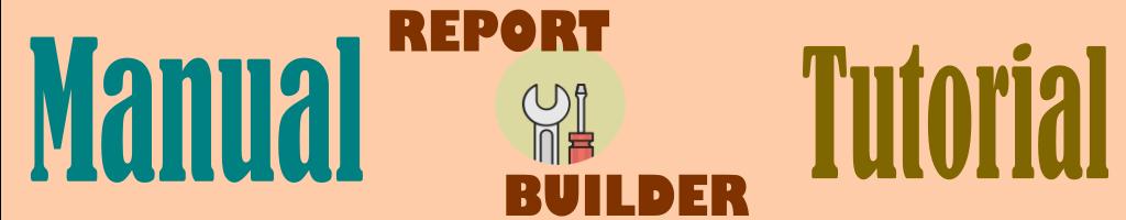 Tutorial manualñ de report builder en español